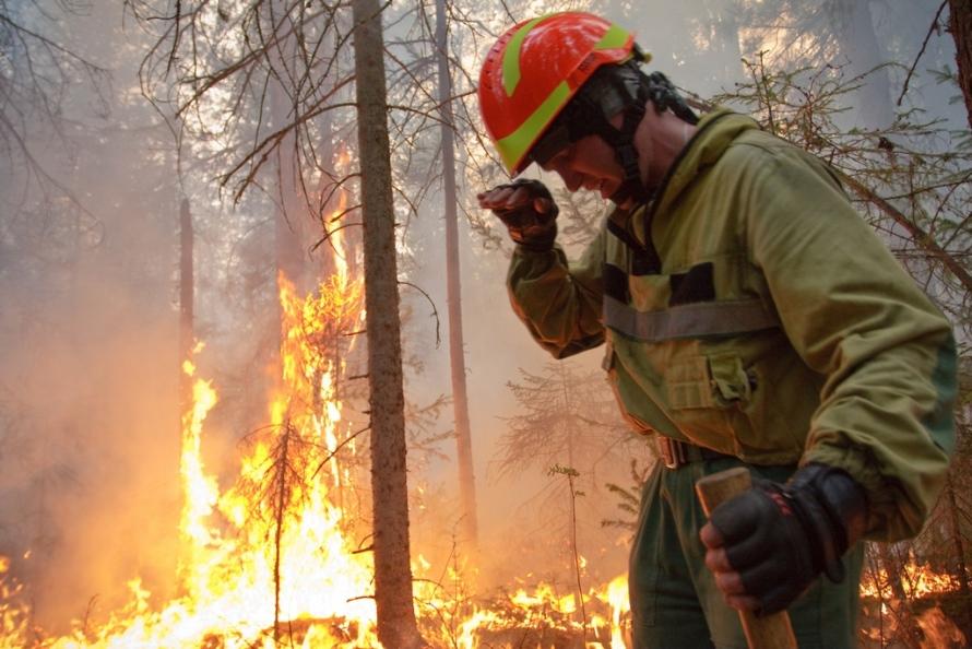В районе потушено 24 лесных пожара