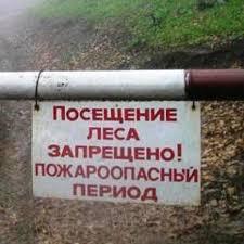 Постановлением мэра Усть-Илимского района для граждан закрыты все въезды в леса