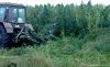 На территории Чунского района продолжается уничтожение дикорастущей конопли