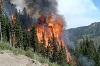 Впереди – лесопожарный сезон