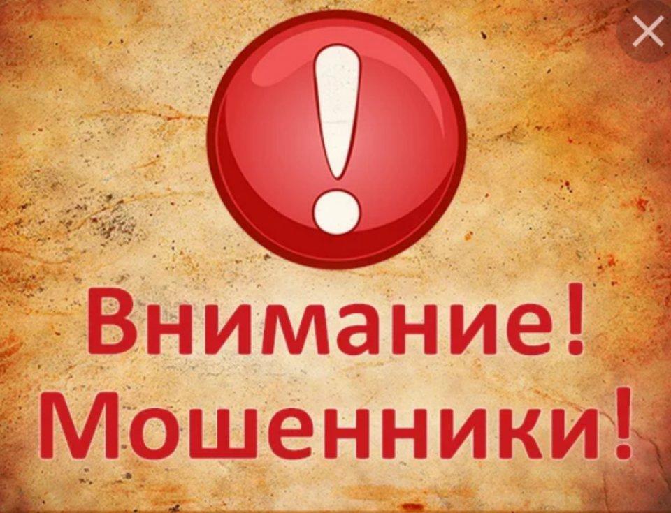 1568898419_zjfvpbwvjyi.jpg
