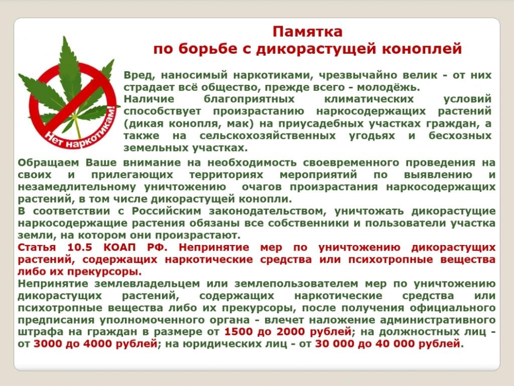 Screenshot_20200515-110917_PowerPoint.jpg