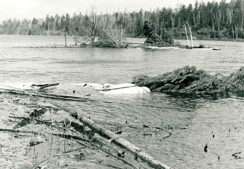 Усть-Илимское море в районе Березняков (май 1974 г.).jpg