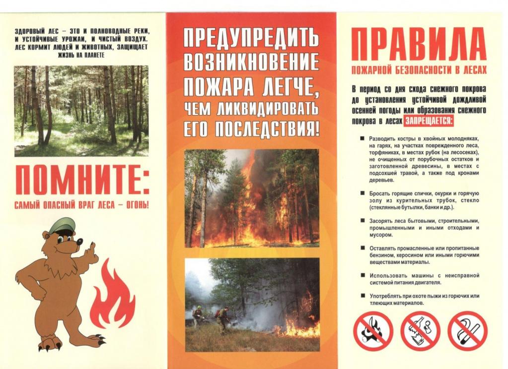 Пожарная безопасность в лесу.jpg