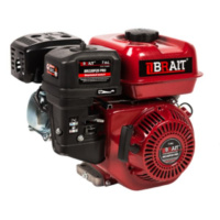 Двигатель Brait 220P(20)