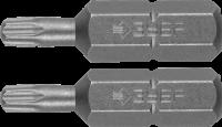 """Биты Зубр """"МАСТЕР"""", T10 - 1 шт, Т15 - 1 шт, 25 мм, 2 шт, 26005-10/15-25-2"""
